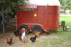 Cool Coops! - Re-purposed Trailer Coop -- Community Chickens