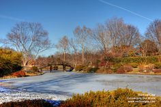 Missouri Botanical Gardens...need to go and  check it out!