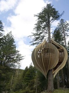 Monday Morning Treehouse No. 5. A collection of unique and interesting tree dwellings.