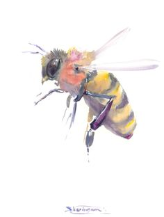 Honey Bee Art Watercolor Painting Flying 10 X 8 In Original One Of A Kind
