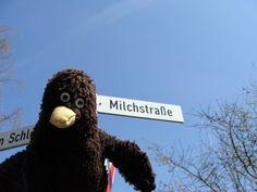 Erwin entdeckt die Milchstraße.