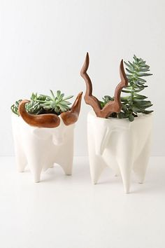 Greenside Planters by Anthropologie