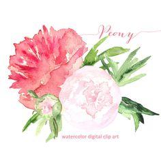 Peony. Watercolor clip art, SALES! hand drawn. peony bouquet. Peony wedding, bridal pink flowers invitations, logo, Peony clip art.
