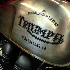 Scrambler y Racer Puebla! Triumph Bobber, Triumph Cafe Racer, Triumph Motorbikes, Triumph Bonneville, Triumph Motorcycles, Bobber Bikes, Bobber Motorcycle, Bobber Chopper, British Motorcycles