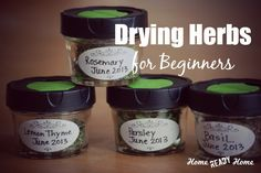 Drying Herbs for Beginners
