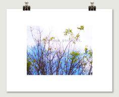 Blue Tree Pop Art Clouds photograph by SmokestackPhotomat, $10.00