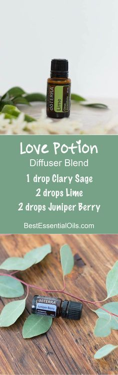 doTERRA Essential Oils Love Potion Diffuser Blend