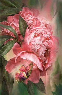 Title:Summer Peony - Melon Artist:Carol Cavalaris Medium:Mixed Media - Paintings http://fineartamerica.com/featured/summer-peony-melon-carol-cavalaris.html#comment8822897