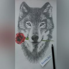 Wolf with red rose.  #complete #art #wolf #draw #drawing #myart #wild #lovely #pencils