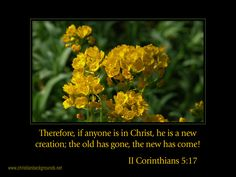 BIBLE STORIES ARE TRUE: SCRIPTURE(S) & PRAISE, IF U R N CHRIST, U R A NEW CREATION-THE OLD HAS GONE!