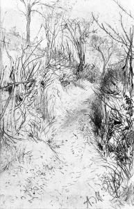 Path Lined with Bare Hedges - Adolph von Menzel - The Athenaeum c. 1842-1843 -- pencil