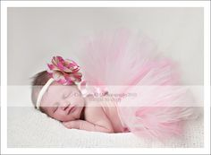 Newborn Photos, Baby Photos, Infant Photos