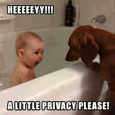funny baby memes - Google Search