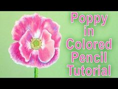 colored pencil poppy tutorial (on a hot plate) - YouTube