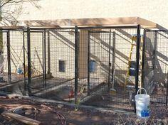 diy dog kennels