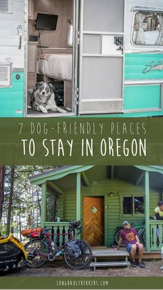 49 Best Gopetfriendly Oregon Images In 2019 Dog Friends