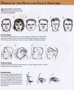 Design of the head and facial features.