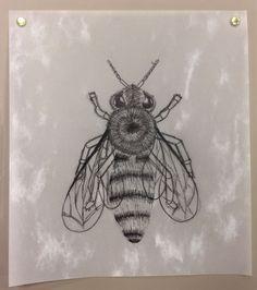 6th Grade -  Bee Illustration Art Project