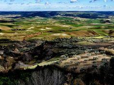 Valle coltivata a Poggiorsini nel Parco nazionale dell'Alta Murgia in Puglia. Foto di Diana Cimino vincitrice della menzione speciale Paesaggio agricolo nel concorso fotografico «Obiettivo Terra» di Fondazione Univerde e Società geografica italiana, che ha visto tra i promotori anche LifeGate