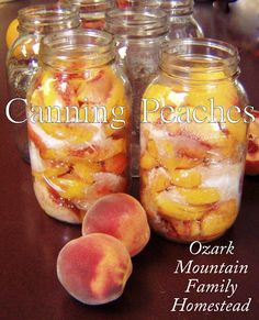 Ozark Mountain Family Homestead: Canning Peaches with links to canned Peach Butter and Spice Peach Butter. Canning Tips, Home Canning, Canning Recipes, Canning Food Preservation, Preserving Food, Peach Butter, Canning Peaches, Do It Yourself Food, Canned Food Storage
