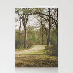 Going Green Stationery Cards - Set of 3 Folded Cards by Katayoon Photography - $12.00