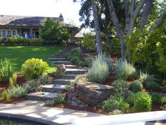 Landscaped stone stairs...