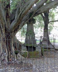 tumba del vampiro en el panteon de belem