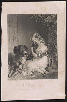 8 Best Boston Terrier images | Garden flags, Animal drawings, Animal