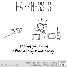What Makes You Happy, Are You Happy, I Love Dogs, Cute Dogs, Yorkshire Terrier Puppies, Cartoon Dog, Dog Cartoons, Animal Quotes, Happy Dogs