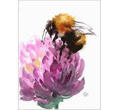 Watercolor Bumblebee - Original Painting 7 x 9 inches Insects Flowers by CMwatercolors on Etsy https://www.etsy.com/listing/256753289/watercolor-bumblebee-original-painting-7