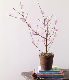 The Materials A tall, twiggy branch A pot Yarn Soft tulle or tissue paper The How To With glue, affix twisted squares of a soft fabric to the branch. Wrap