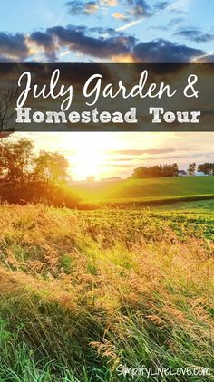 Happy July! Here's a little peek inside our life on 5 acres in rural Eastern Iowa. I hope you enjoy this July Garden Homestead Tour I've put together!