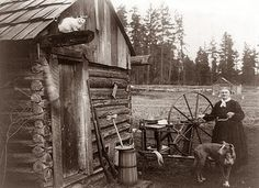 Gmomma old homestead on a farm in Washington state. The picture was made in 1908. Notice the cat up on the beam of the log cabin. The guns, butter churn.