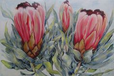 #Proteas#Floral#Western Cape '2 and a Pip' 1.2m x 80cm oil on canvas, painted by Ellie Eburne