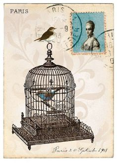 Vintage bird with birdcage image, for scrapbooking.