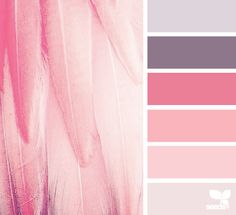 design seeds | feathered tones | for all who ♥ color