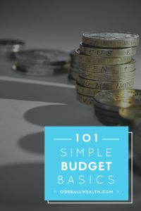 Budgeting Understanding the Budget Basics Managing Your Money, Make Money Blogging, Money Saving Tips, Money Tips, Budgeting 101, Accounting Career, Finance Blog, Online Income, Ways To Save Money
