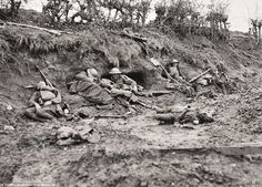 WWI, 12 Oct Wounded men of the Australian Division surrounded by the bodies of their dead comrades at the railway cutting on the Ypres-Roulers line during the battle of Passchendaele , on October (This is the original caption) Cropped. World War One, First World, Battle Of Passchendaele, Battle Of Ypres, Doctor Johns, Historical Pictures, Military History, Painting, 12 October