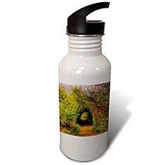 GREEN TRAIL TUNNEL - Flip Straw 21oz Water Bottle (wb_245698_2)  by 3dRose  Link:
