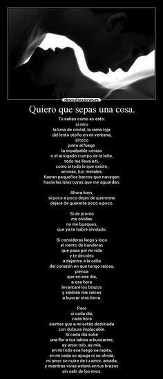 Pablo Neruda... ...y mientras vivas, estara en tus brazos, sin salir de los mios..