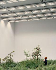 The Australia Pavilion at the La Biennale di Venezia - Article - Venice, Italy - The Local Project Facade Architecture, Landscape Architecture, Chinese Architecture, Futuristic Architecture, Venice Biennale, Built Environment, Design Museum, Land Art, Art Plastique