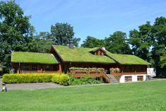 Honka Blockhaus mit Gründach - Dachneigung 30°