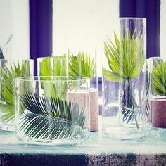 #BuenosDias. Seguimos con la tendencia #jungle en #decoracion, esta vez utilizando para hacer un centro de mesa con las hojas de las #plantas de la familia de las #palmeras (mira el post del mes de febrero de El Blog de Los Peñotes). -  #lospeñotes #jardinoterapia #elblogdelospeñotes  #thanksforcoming #thanksforcomment #graciasportulike✔ #graciasporcomentar💚#hygge #weekend #home #homedeco #homestyle #styleinfluencer #style #green #greenery #deco  #interiordesign #interior #ideas #diseño…