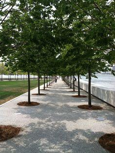 Louie Kahn, FDR Memorial, Roosevelt Island, NYC Roosevelt Island, Architects, Sidewalk, Trees, Nyc, Side Walkway, Tree Structure, Building Homes, Walkway