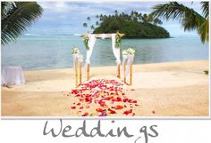 Petal Aisle at Nautilus Resort. Newest star resort in the Cook islands. Check our website for Wedding package details Wedding Week, Star Wedding, Dream Wedding, Wedding Stuff, Wedding Ideas, Luxury Wedding Venues, Destination Wedding, Book Airline Tickets, Italian Garden