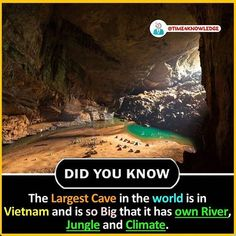Largest cave in the world Wierd Facts, Wow Facts, Real Facts, Wtf Fun Facts, Funny Facts, True Interesting Facts, Interesting Facts About World, Intresting Facts, Gernal Knowledge