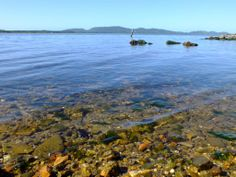 A nice place for meeting, living and dreaming - Lagoa da Conceição, Florianópolis, Brasil