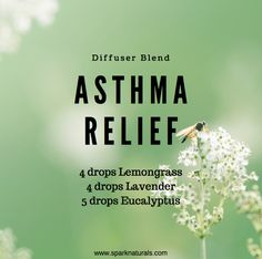 oil for asthma Asthma Relief- Diffuser Blend Asthma attacks try to . - oil for asthma Asthma Relief- Diffuser Blend Asthma attacks try to spread this natura - Asthma Relief, Asthma Symptoms, Headache Relief, Young Living Oils, Young Living Essential Oils, Young Living Asthma, Essential Oils For Asthma, Essential Oils For Breathing, Diffuser