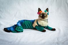 """Lil' Jinkx models an outfit inspired by Jamie Von Stratton's """"Emerald City Dress"""""""