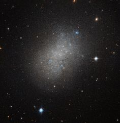 Hubble captures the glow of distant stars within NGC 5264, a dwarf galaxy…